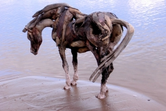 heather_jansch_driftwood_sculpture1
